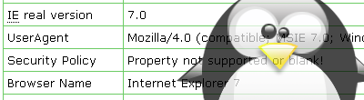 IE7/Linux