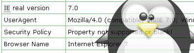 IE7/Linux